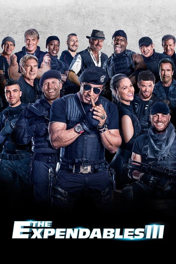 Cover of the movie The Expendables 3