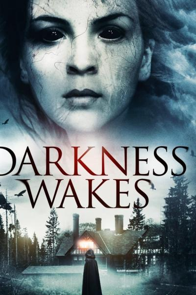 Cover of Darkness Wakes
